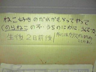 Nekohako_2